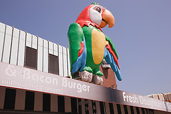 Huge parrot model on building in Blackpool.