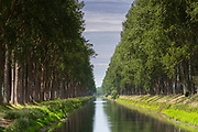 Picturesque avenue of tall trees and Damse Vaart Canal at Damme, province of West Flanders in Belgium