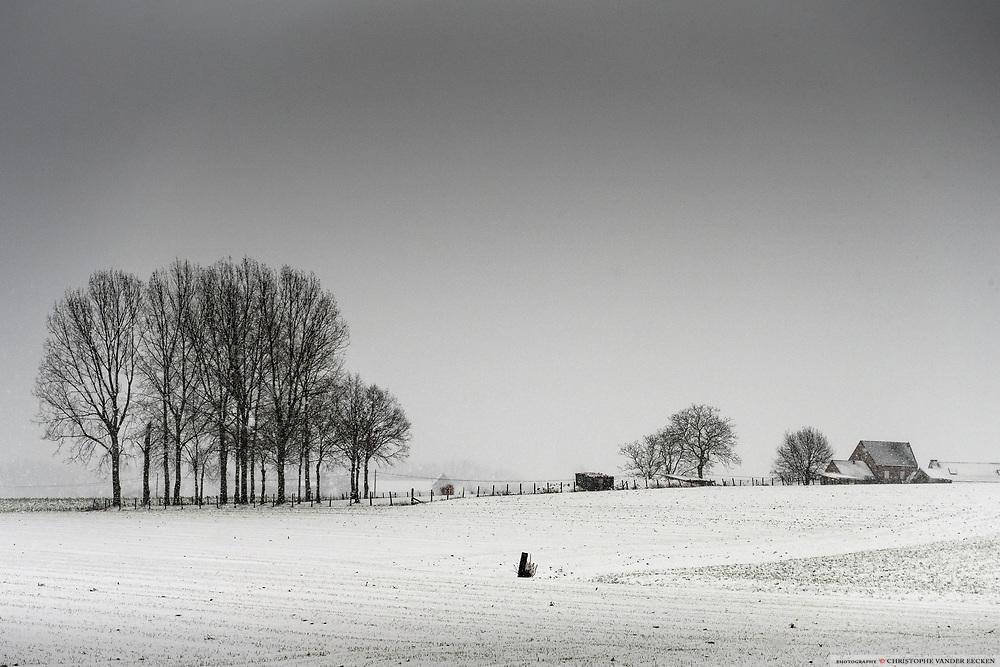 Brakel, Belgium, 16 jan 2021, Snowscape, Burreken.