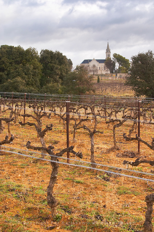 Lagamas village and church. Domaine Alain Chabanon, previously Font Caude, in the Lagamas village. Montpeyroux. Languedoc. Vines trained in Cordon royat pruning. France. Europe. Vineyard.