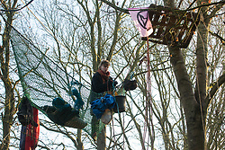 Harefield, UK. 21 January, 2020. An activist stands in a net suspended between trees at the Save the Colne Valley wildlife protection camp. Activists seeking to protect ancient woodland threatened by the HS2 high-speed rail link continue to occupy both the roadside and woodland sites of the camp having retaken it from bailiffs acting on behalf of HS2 on 18th January. 108 ancient woodlands are set to be destroyed by HS2.