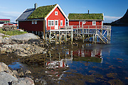 Images from the Lofoten Islands in arctic Norway at midsummer. Grass roofed rorbuer (cabins) can be found all over the islands