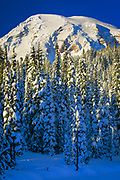 Mt Rainier at Reflection Lakes in Winter