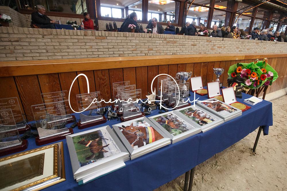 Prizes<br /> BWP Hengstenkeuring 2014<br /> Zilveren Spoor Moorsele 2014<br /> © Dirk Caremans