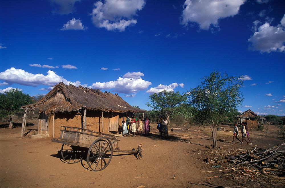 The desert south near Betioky, Madagascar