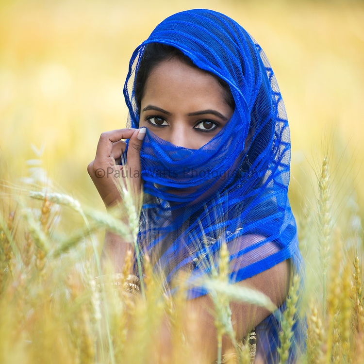 Young Indian Woman in Wheat field with colorful scarf