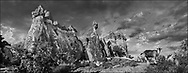 """Sacred Stone - Black and white photo art print of the fairy chimney rock formations of Cappadocia by Paul Williams. Picture of the fairy chimney rock formations and rock pillars of """"Pasaba Valley"""" near Goreme, Cappadocia, Nevsehir, Turkey.Inside these rock pillars are built some of the earliest Christian churches. The area was used by Christians during Roman purges of Christians as a hiding place due to its remoteness."""