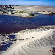 Magdalena Island. Baja California Sur. Mexico.