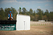 2  April, 2011:  Jockey Danielle Hodson shows her horse Dugan the first National Fence before the Woodward Kirkover hurdle race.