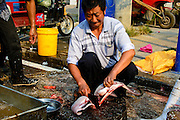 China, Xian, outdoor fresh fish market