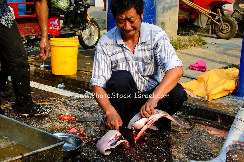 China, Xian, outdoor fresh fish market