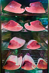 fillet of tunas, Thunnus sp., in refrigerator for sale at wholesale shop, Tsukiji Fish Market or Tokyo Metropolitan Central Wholesale Market, the world's largest fish market, hadling over 2, 500 tons and over 400 different kind of fresh sea food per day
