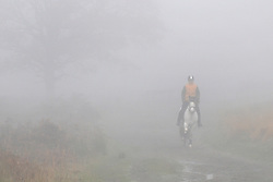 ©London News pictures...16/11/2010. A horse and rider emerge from the fog. Walkers enjoy the fog in Richmond Park in London today (Tues). Photo credit should read Stephen Simpson/London News Pictures.