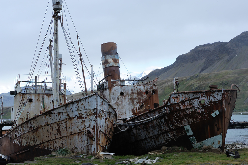 Rusting whaling boats  beached in the ruins of the Grytviken whaling station. Grytviken, South Georgia 20Feb16