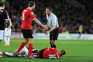 Referee Andre Marriner chats to Cardiff's Ben Turner as Craig Noone lies injured. Barclays Premier league, Cardiff city v Southampton at the Cardiff city Stadium in Cardiff,  South Wales on Boxing day, Thursday 26th Dec 2013. <br /> pic by Andrew Orchard, Andrew Orchard sports photography.