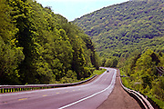 Northcentral Pennsylvania, US Route #6. summer forest
