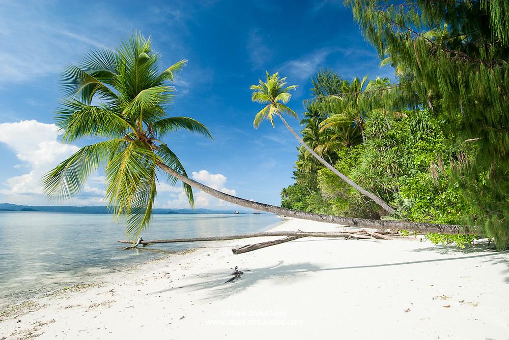 Idyllic beach scene, Kri Island, Raja Ampat, West Papua, Indonesia