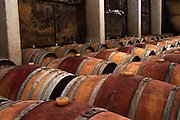 In the barrel aging cellar. Rows of wine aging in barrels. Domaine Viret, Saint Maurice sur Eygues, Drôme Drome France, Europe