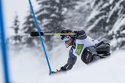 Pedersen Jasper of Norway during Slalom race at 2019 World Para Alpine Skiing Championship, on January 23, 2019 in Kranjska Gora, Slovenia. Photo by Matic Ritonja / Sportida