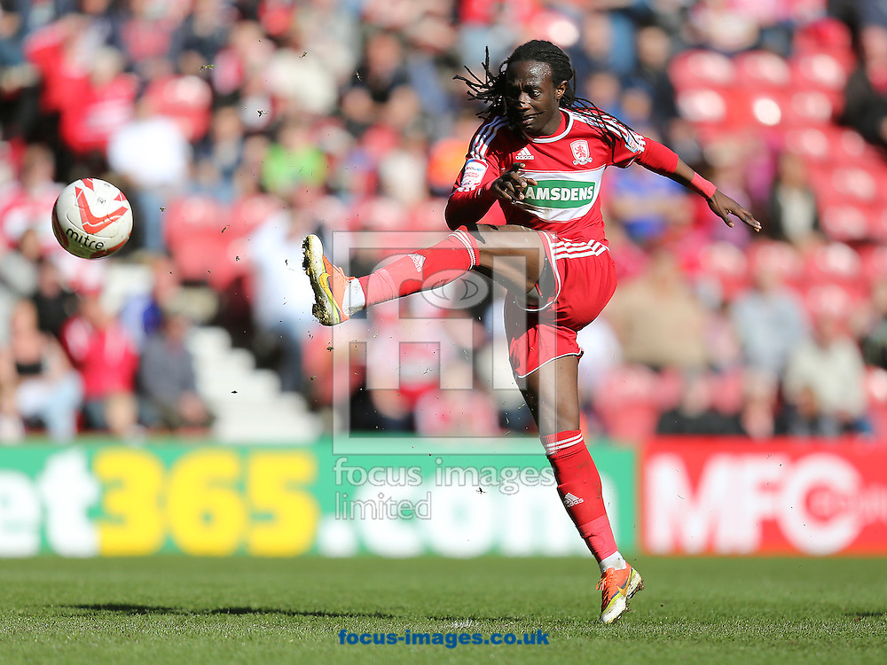 Picture by Paul Gaythorpe/Focus Images Ltd +447771 871632.27/04/2013.Marvin Emnes of Middlesbrough during the npower Championship match at the Riverside Stadium, Middlesbrough.