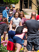 "03 MAY 2020 - PELLA, IOWA: People walk through downtown Pella, Iowa. Pella is a small community in central Iowa. The town's economy is driven by tourism and the Tulip Festival, the largest tourist event of the year, has already by canceled for 2020 because of fears that the festival could become a COVID-19 (Coronavirus/SARS-CoV-2) ""Super Spreader"". The Governor of Iowa reopened 77 of Iowa's 99 counties. The counties that were reopened have reported low incidences of Coronavirus. Marion County, where Pella is located, has reported 12 cases of Coronavirus. There have been 9,169 confirmed cases of Coronavirus in Iowa, including 1,476 cases in the Des Moines area, less than one hour away. Many people from Des Moines drove to Pella this weekend to see the tulips for which the town is famous.      PHOTO BY JACK KURTZ"