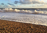 Jurassic Coast Dorset. Rough seaweed at Eype Beach