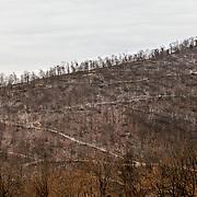 Near Shamokin, PA