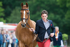 First Horse Inspection 4* LUHM 2015