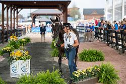Cool Isabel, BEL, Aranco V<br /> World Equestrian Games - Tryon 2018<br /> © Hippo Foto - Stefan Lafrentz<br /> 11/09/2018