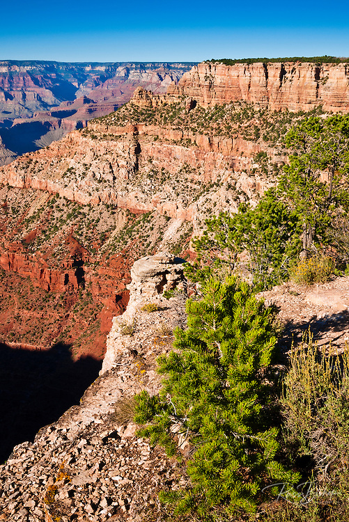 The Grand Canyon from the South Rim, Grand Canyon National Park, Arizona