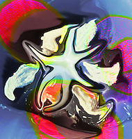 fluid abstract shapes floating on multicolored background with shades. In the center fluid abstract star.