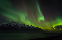 A spectacular display of the Aurora Borealis or as it is commonly called, the northern lights, occurred the evening of November 8 through the early morning of November 9, 2013 over Haines, Alaska. The luminous glow of the aurora borealis dances in the upper atmosphere above Mt. Emmerich and other peaks in the Chilkat Range at the Chilkat Inlet for the Chilkat River just outside Haines, Alaska. The bottom edge of an aurora is typically 60 miles high with the top edge at an altitude of 120 to 200 miles, though sometimes high altitude aurora can be as high as 350 miles. The collision of sun storm electrons and protons with different types of gas particles in Earth's atmosphere cause the different colors. Green, the most common color, is caused by the collision of electrons with atoms of with atomic oxygen.