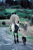 Chili, Région de Puerto Mont, Cowboy et chien // Cowboy and dog, Puerto Mont region, Chile
