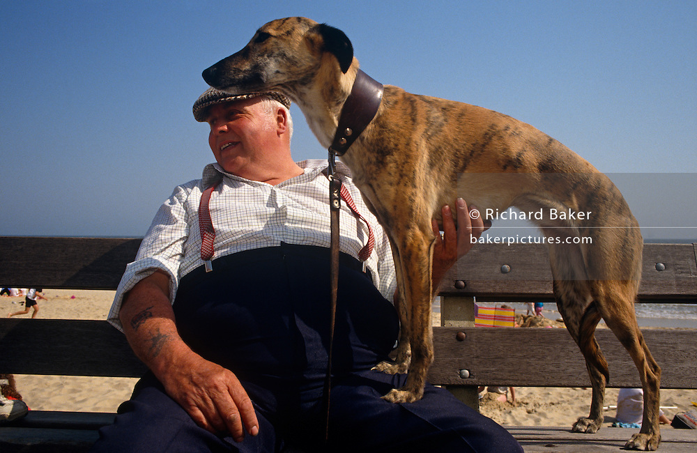 A rather rotund man wearing a flat cap, a checked shirt under braces that keep his ample trousers up above his fat tummy, affectionately tickled his pet dog, a Whippet ,who stands still with two paws on his master's large leg. It is a bright day on the beach at Great Yarmouth in Norfolk, England. Bathers are running on the sand in the background and the man and his dog are content to watch the world go by from their promenade bench. Their is a great deal of trust and love these two have for each other - the gentleman having brought his dog on holiday to the seaside with him, rather than leave him with friends or in kennels. The dog is healthy, lithe and obviously has great speed in those muscular legs, vastly different to the man, whose frame is heavy and slow.