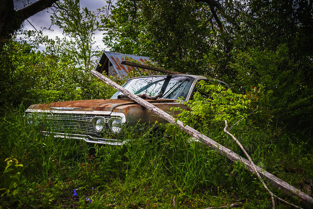 A Forgotten Chevrolet abandoned in a wooded area of Dale County, AL