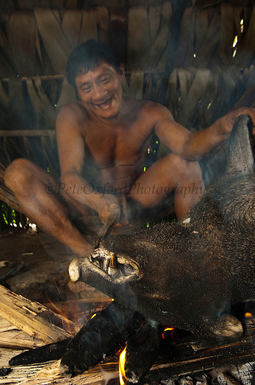 Huaorani Indian - Ontagamo Kaimo cooking a peccary that he hunted for food. Gabaro Community. Yasuni National Park.<br /> Amazon rainforest, ECUADOR.  South America<br /> They first singe the hair off over the fire, then chop it into pieces for boiling or smoke it in a basket that hangs over the fire.<br /> This Indian tribe were basically uncontacted until 1956 when missionaries from the Summer Institute of Linguistics made contact with them. However there are still some groups from the tribe that remain uncontacted.  They are known as the Tagaeri & Taromenani. Traditionally these Indians were very hostile and killed many people who tried to enter into their territory. Their territory is in the Yasuni National Park which is now also being exploited for oil.