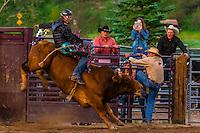 Bull riding, Snowmass Rodeo, Snowmass Village (Aspen), Colorado USA.