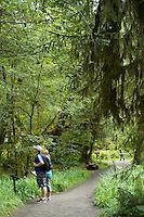 Mini Trail. Hoh River Rain Forest. Olympic National Park, WA