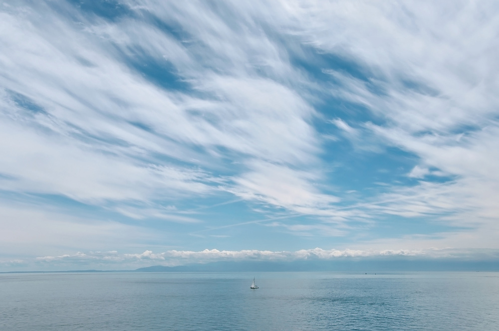 View from Cattle Point on San Juan Island, Washington. Photo by William Byrne Drumm.