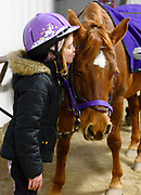 Gillian Bruha, 9, gives Little Red a kiss during a lesson with Harmonious Horses Riding School at the Heritage Arena on December 1, 2014.