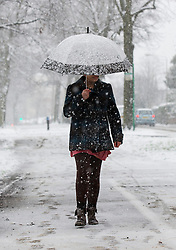 © Licensed to London News Pictures. 14/01/2013. London, United Kingdom ..A woman uses an umbrella to shield herself against the heavy snow in Leicester...Photo credit : Chris Winter/LNP