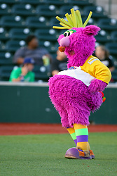 11 August 2012:  The Purple Party Dude does a dance routine during a Frontier League Baseball game between the River City Rascals and the Normal CornBelters at Corn Crib Stadium on the campus of Heartland Community College in Normal Illinois.  The CornBelters take this game in 9 innings 7 - 2 with a 5 run 2nd inning.