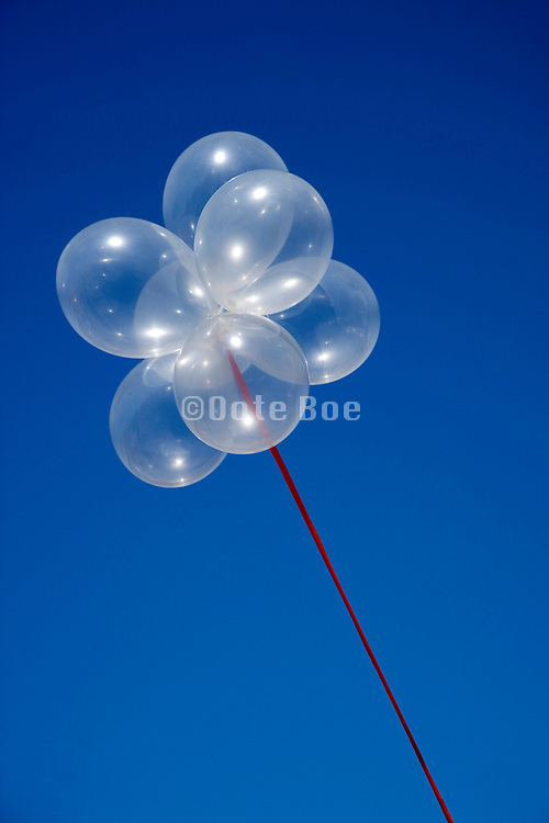 a cluster of transparent balloons against a blue sky
