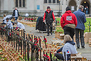 A team poppy factory member - Volunteers from the Royal British Legion set out the Field of Remembrance outside Westminster Abbey. The field comprises thousands of poppies on crosses to remember individuals and units. It will be completed in time for a Royal visit on Thursday . London 07 Nov 2017.