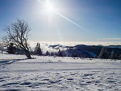 Cross country skiing track on winter landscape, Black Forest, Mount Feldberg, Germany