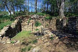 Restoration Site