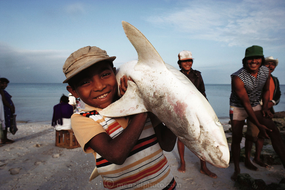 A young boy carries a shark from a fishing boat to the beach in Campeche, Mexico.