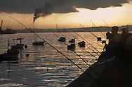 Fishing poles lined up at harbor at sunrise, Havana, Cuba