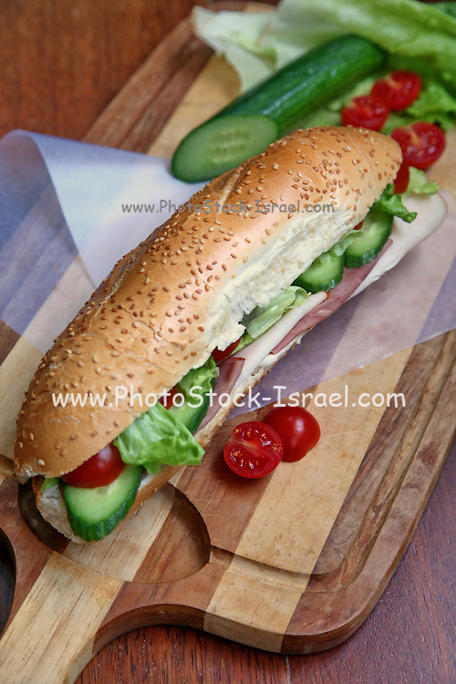 Sandwich with Cold cuts of turkey and beef