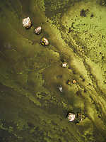Abstract aerial view of greenish baltic sea in Estonia.
